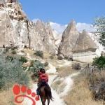 Cappadocia-horseback-riding-turkey13