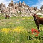Cappadocia-horseback-riding-turkey3